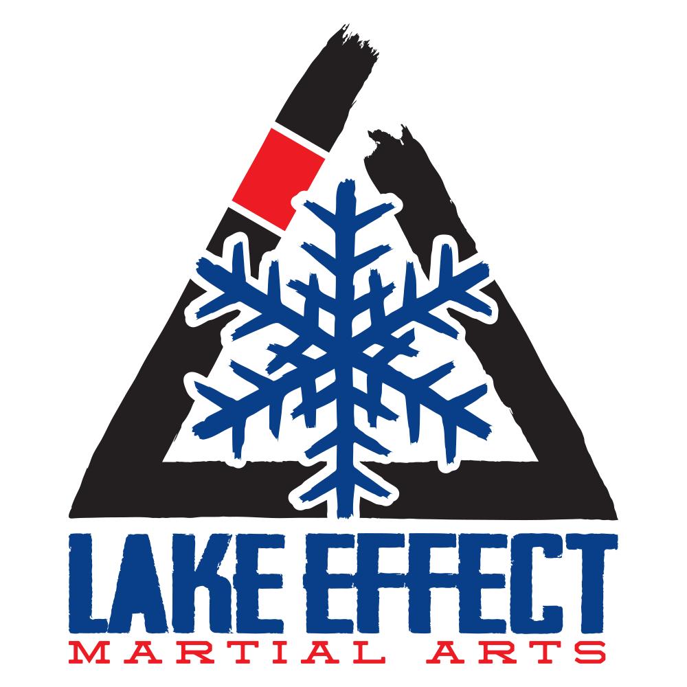 Lake Effect Martial Arts